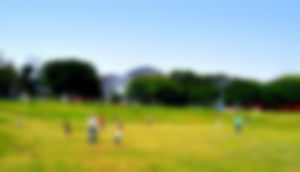 【ゲイ】新木場夢の島公園で野外露出してきましたwwwwwww