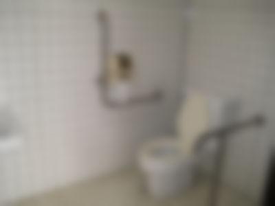 某公園の発展トイレ