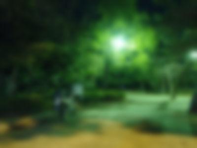 【ゲイ体験談】公園で上下の口を犯されたスケベ女装子の末路・・・・・
